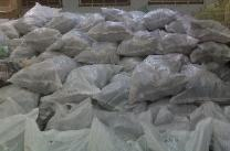 280 bags of 50 lbs each = 14000 lbs in 20ft container